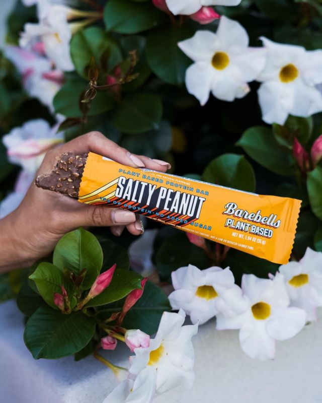 SWEET & SALTY 🤤 The ideal combination for all peanut addicts. 🥜   With 15 grams of protein (from soy, peas and rice) per bar and no added sugar, they are the perfect 'on the go' snacks! 🤩  #BarebellsUSA